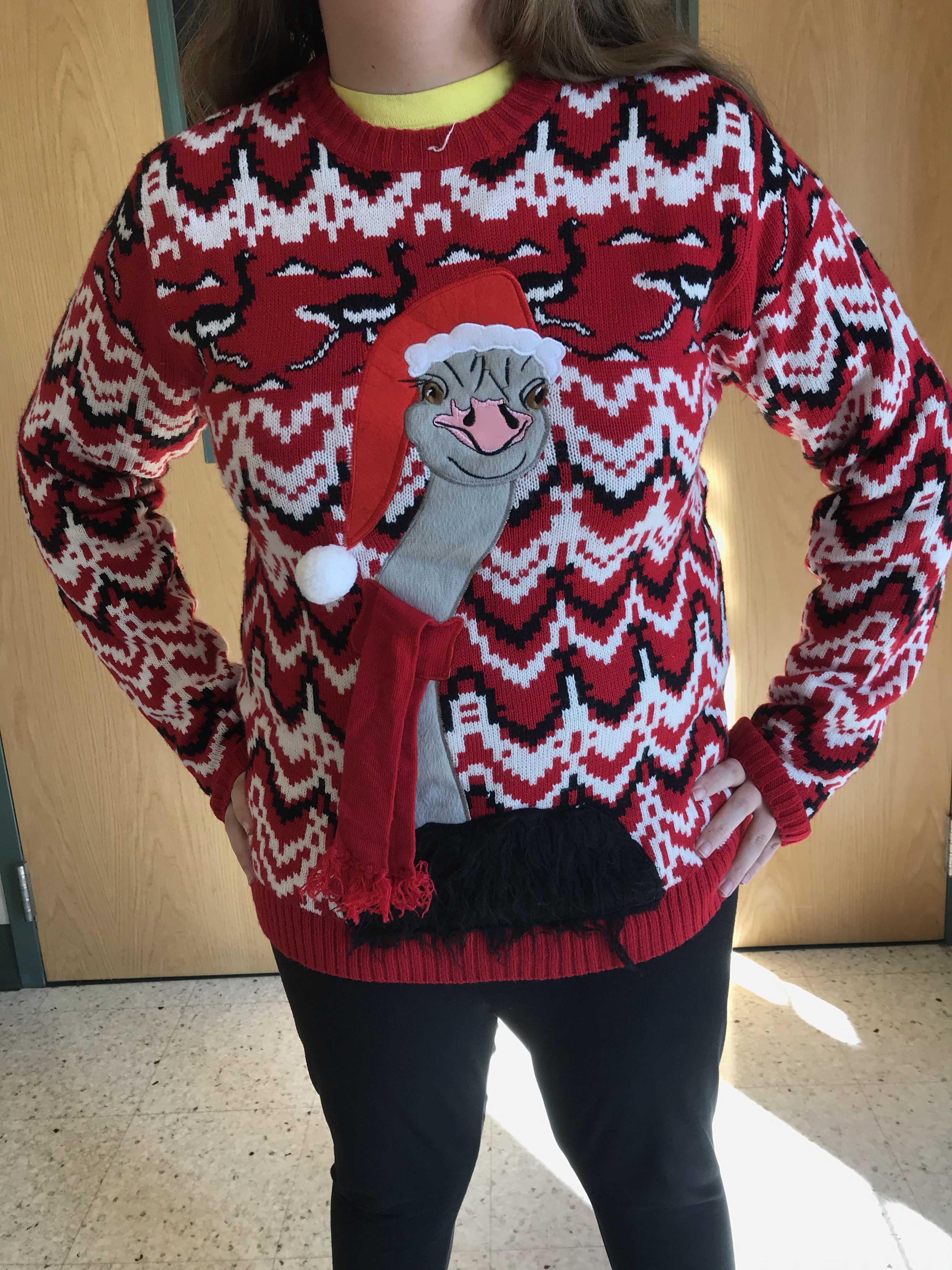 Emmaus Christmas 2020 English Emmaus celebrates National Ugly Christmas Sweater Day – The Stinger
