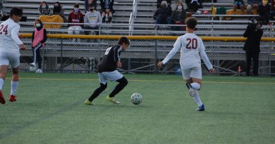 Boys soccer advances to state playoffs