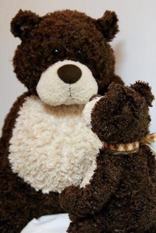 Emmaus community reflects on emotional impact of childhood stuffed animals