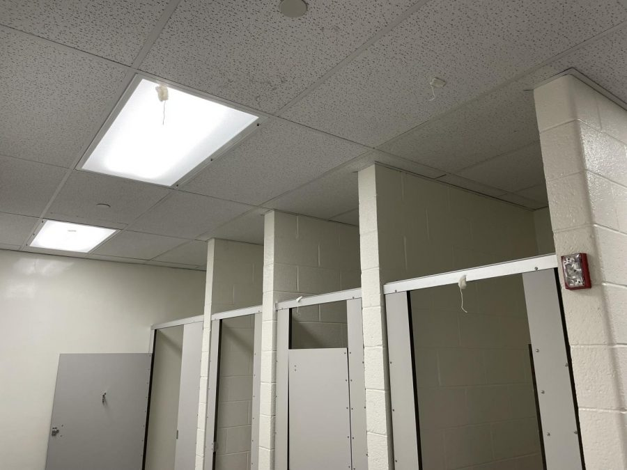 Tampons were found stuck to the ceiling in one of the girls bathrooms. Photo by Rylee Dang.